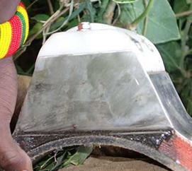Elephant Accelerometers