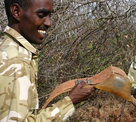 Turning Poachers into Gamekeepers