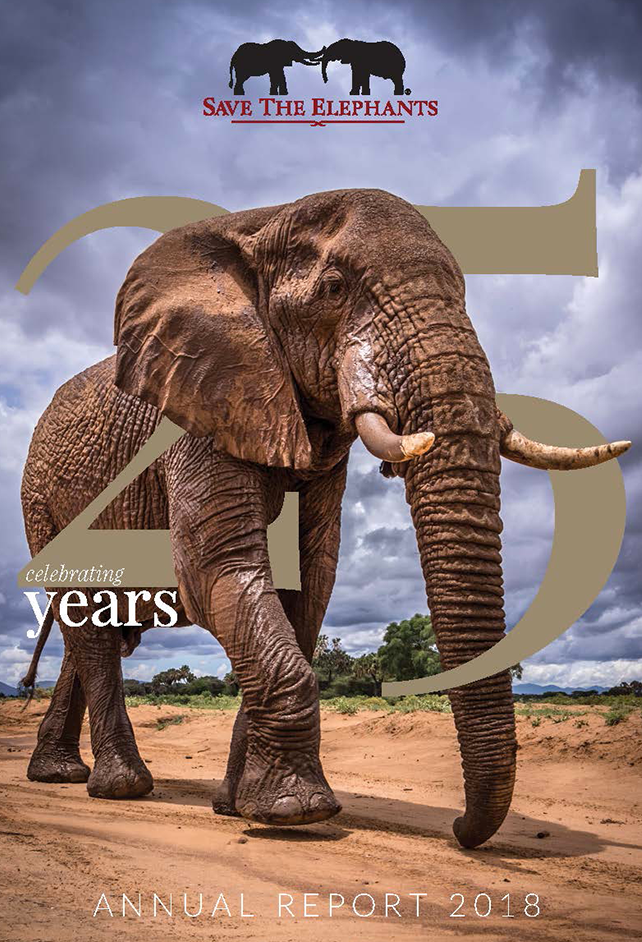 save the elephants, elephant, elephants are important, why elephants are important, STE, wildlife conservation, wildlife, elephant tusks, Samburu National Reserve, Kenya, annual reports, annual report, STE annual reports, STE annual report, report, funding, 2012