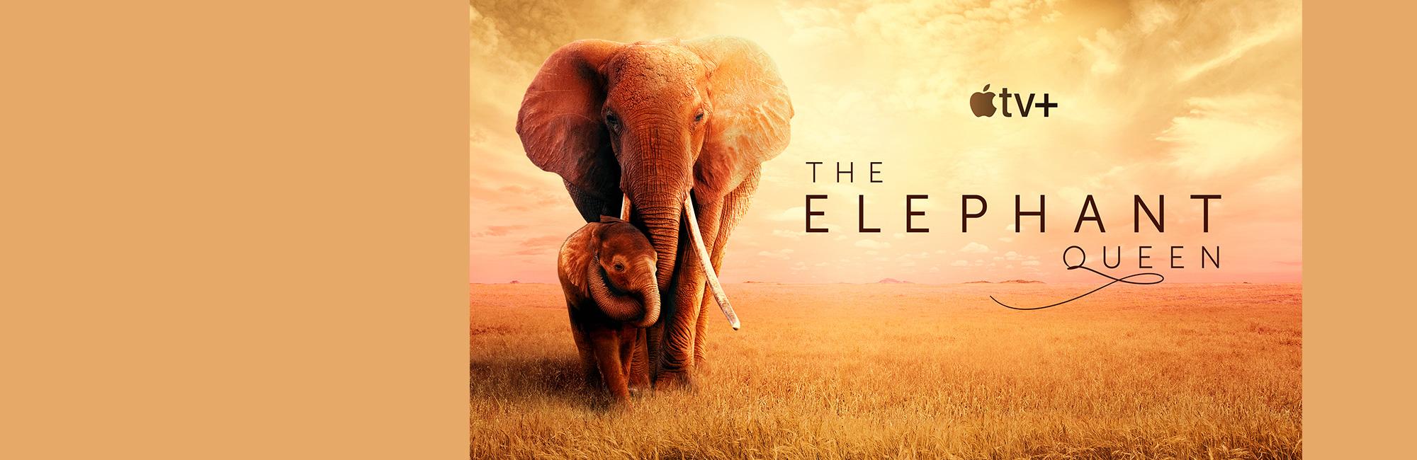 The-Elephant-Queen-Final2